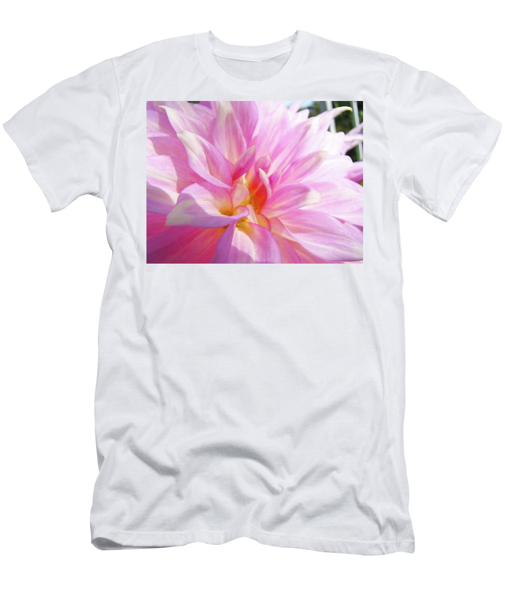 Dahlia Men's T-Shirt (Athletic Fit) featuring the photograph Master Gardeners Pink Dahlias Art Prints Baslee Troutman by Baslee Troutman