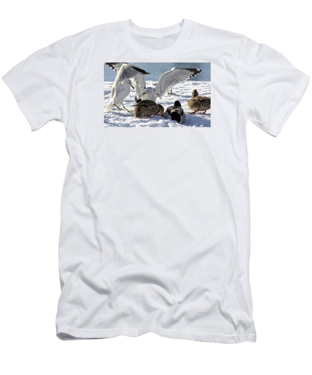 Bird Men's T-Shirt (Athletic Fit) featuring the photograph Meeting Time by Michelle Neidigh
