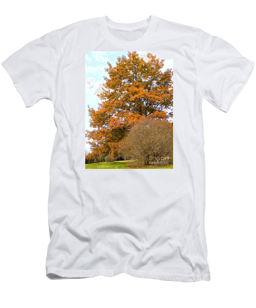 Fall Men's T-Shirt (Athletic Fit) featuring the photograph Mighty Oak In Autumn by William Tasker