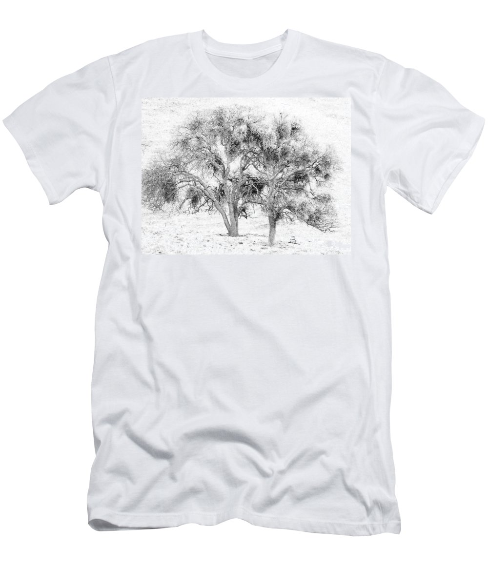 Trees Men's T-Shirt (Athletic Fit) featuring the photograph Mistletoe Tree In Black And White by Karen W Meyer