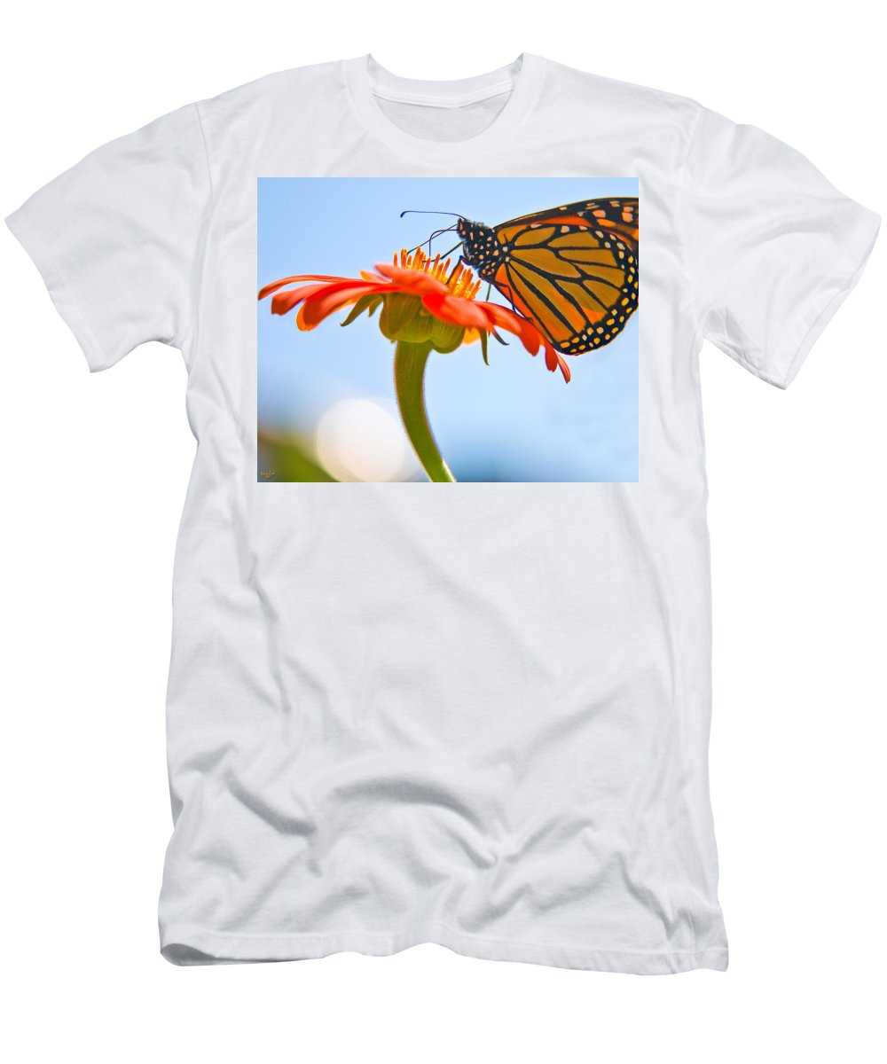 Butterfly Men's T-Shirt (Athletic Fit) featuring the photograph Monarch Working by Chris Lord