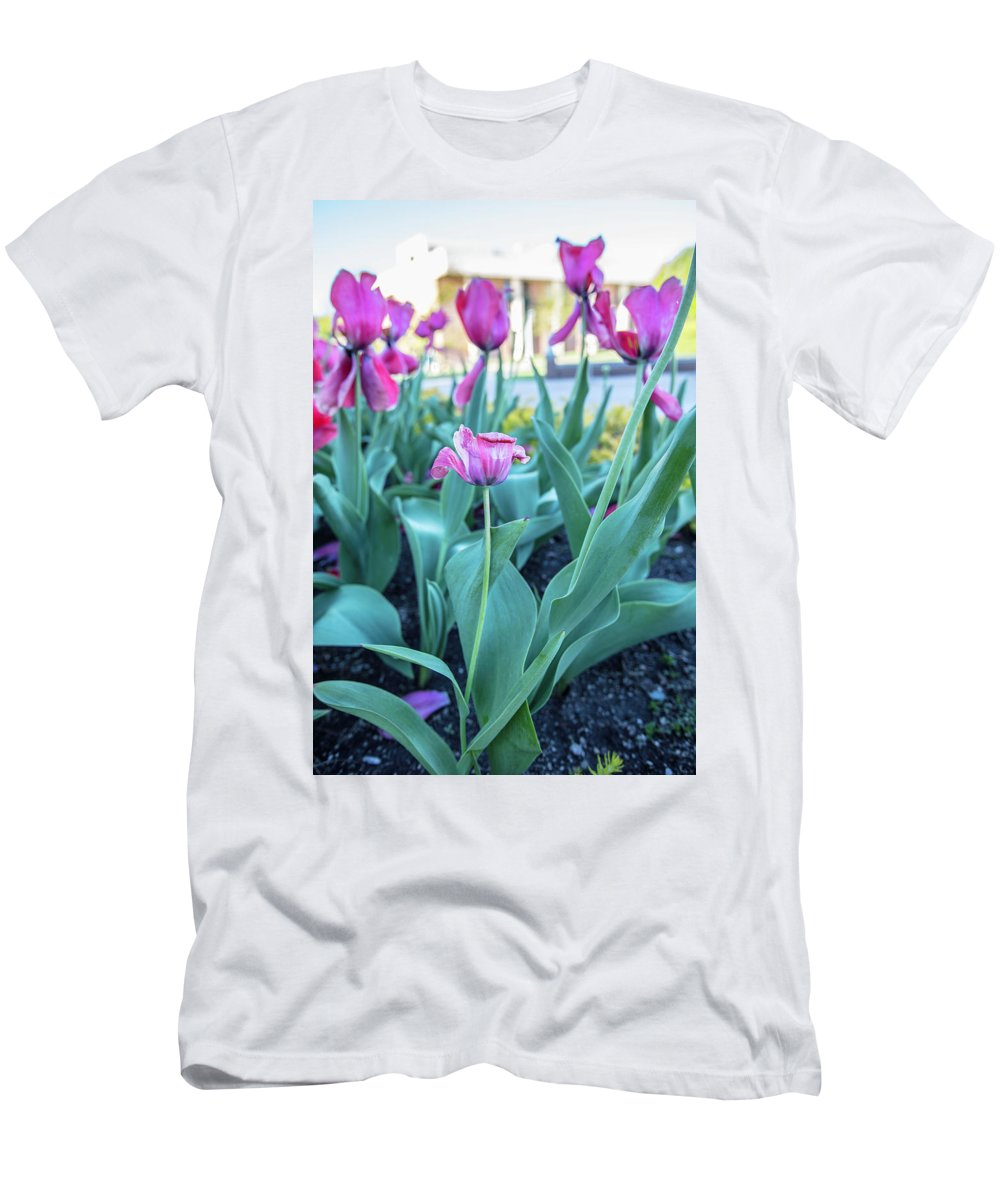 Big Ten Men's T-Shirt (Athletic Fit) featuring the photograph Msu Spring 33 by John McGraw