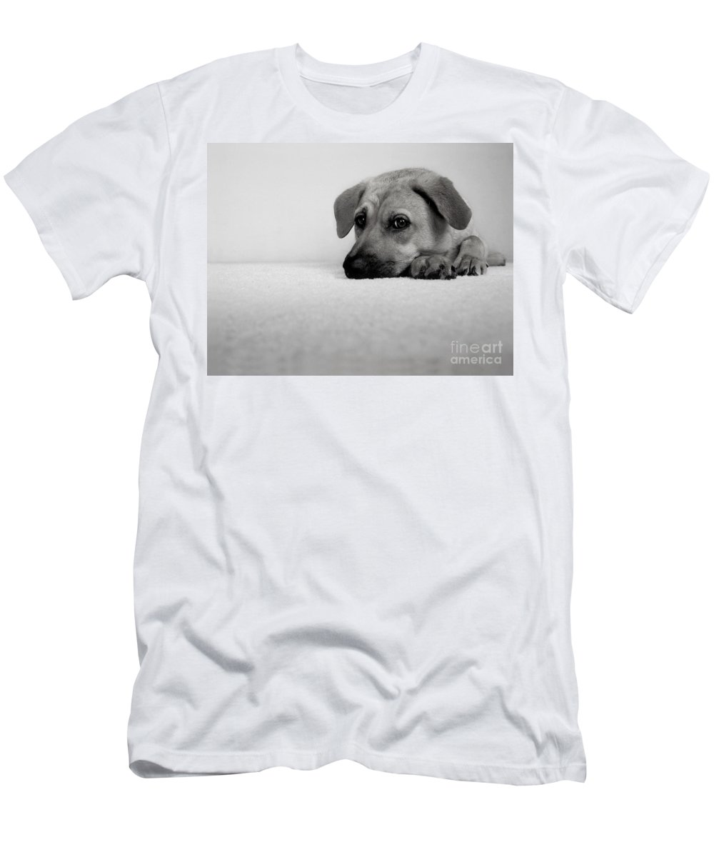 Animal Men's T-Shirt (Athletic Fit) featuring the photograph My Girl by Dana DiPasquale