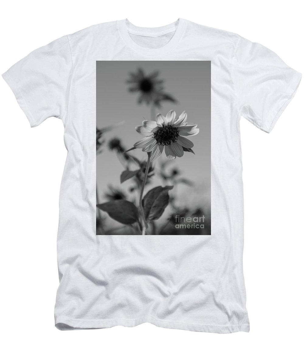 Sunflower Men's T-Shirt (Athletic Fit) featuring the photograph My Pretty by Amy Sorvillo