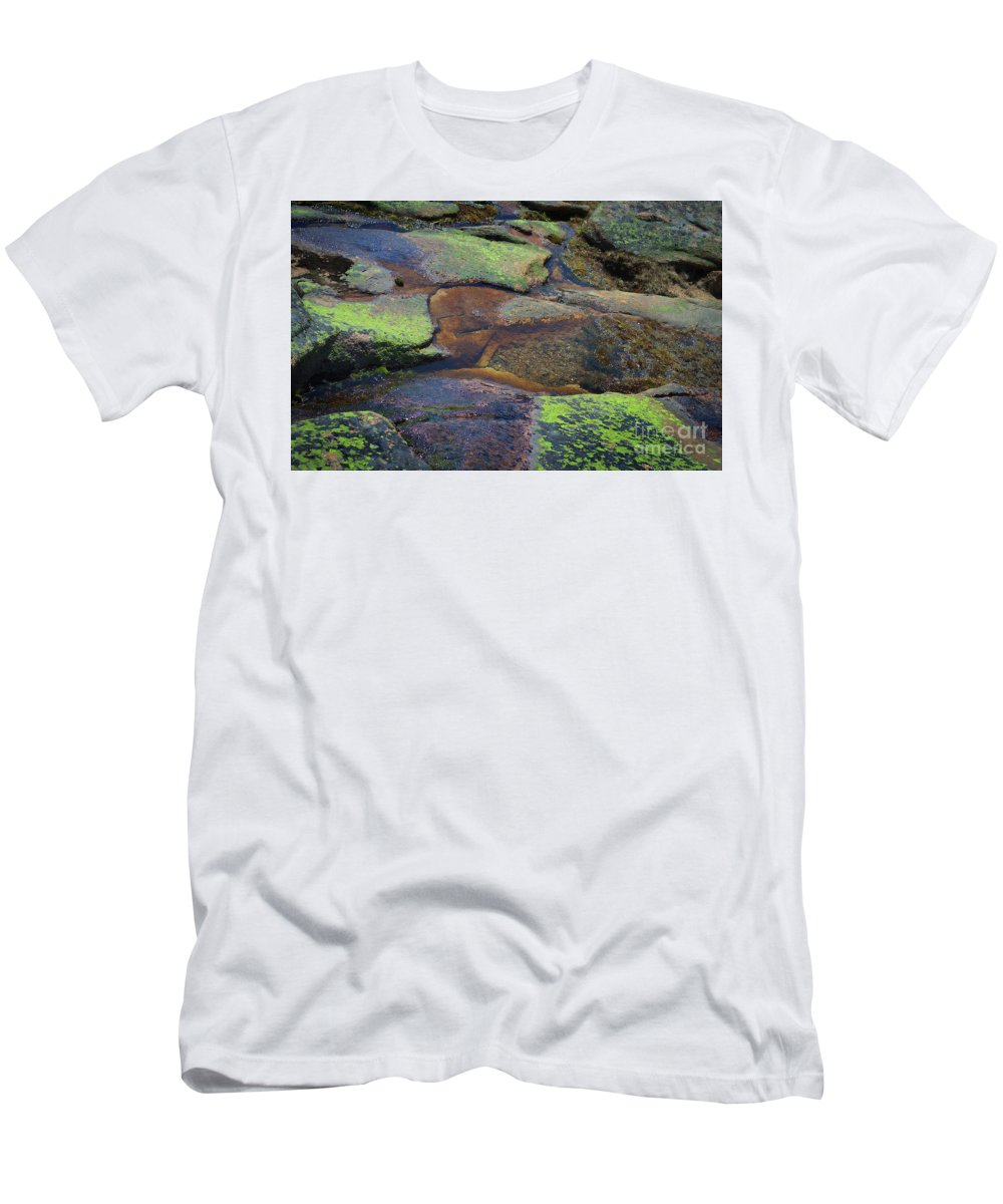 Nature Men's T-Shirt (Athletic Fit) featuring the photograph Nature's Mosaic No. 1 by Skip Willits