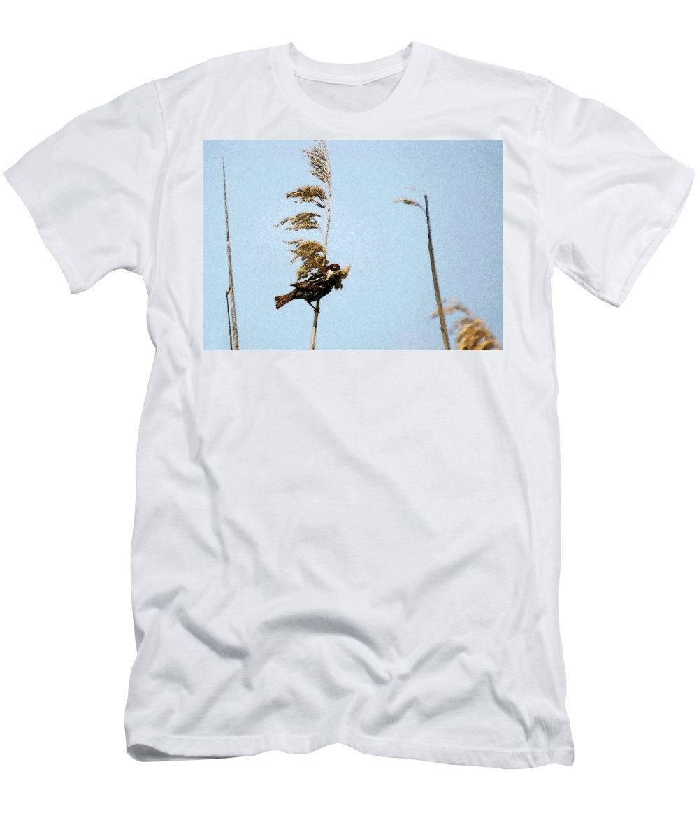 Spanish Sparrow With Nesting Material Men's T-Shirt (Athletic Fit) featuring the photograph Nest Building Sparrow  by Cliff Norton