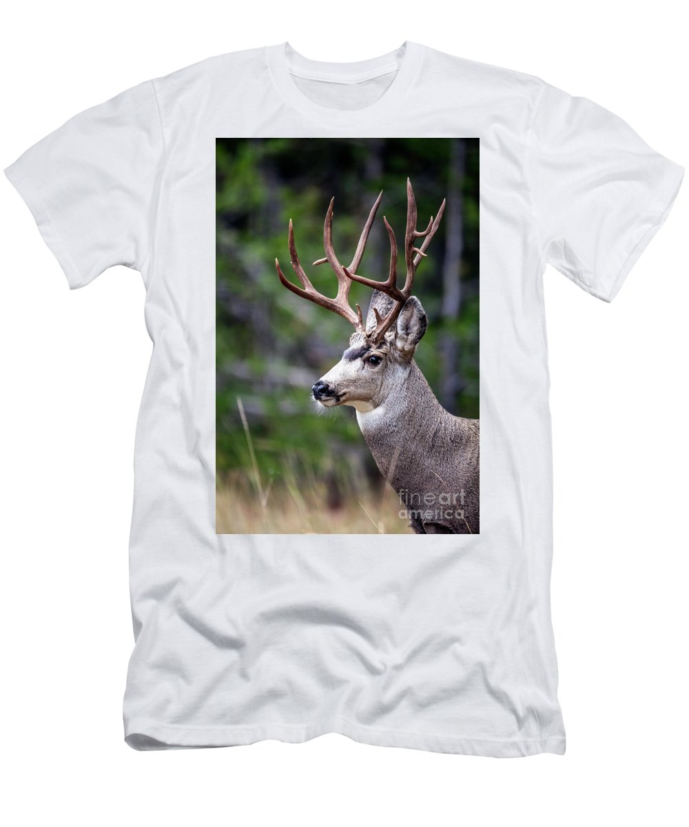 Non-typical Men's T-Shirt (Athletic Fit) featuring the photograph Non-typical Mule Deer Buck Portrait. by Daryl L Hunter