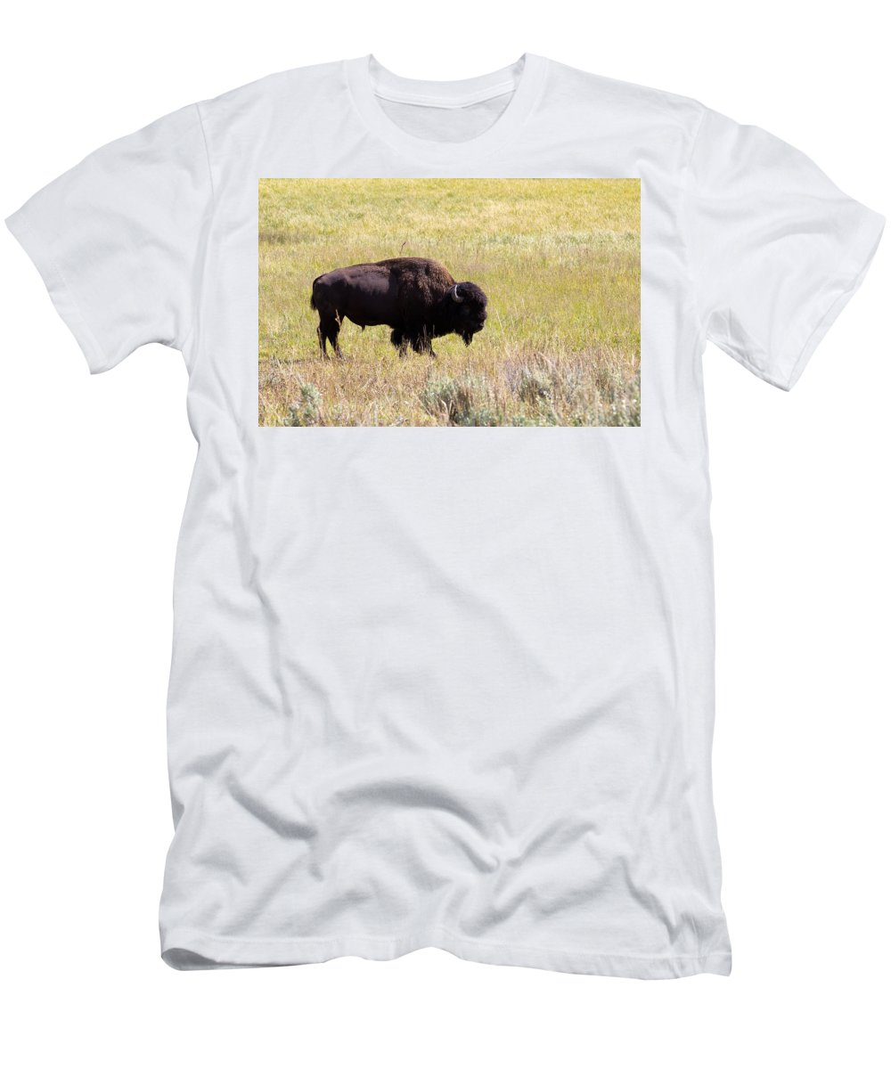Bison Men's T-Shirt (Athletic Fit) featuring the photograph North American Bison- Buffalo In Field by Thomas Baker
