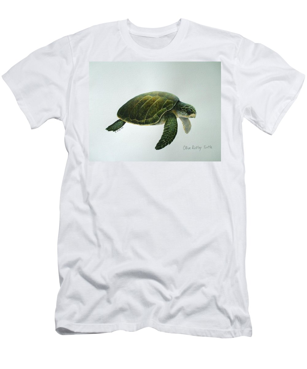 Olive Ridley Turtle Men's T-Shirt (Athletic Fit) featuring the painting Olive Ridley Turtle by Christopher Cox