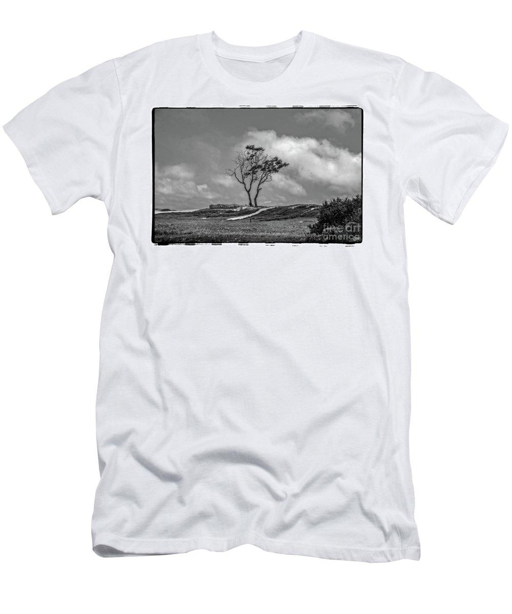 Carpinteria Men's T-Shirt (Athletic Fit) featuring the photograph On The Dunes, Carpinteria by Michael Ziegler