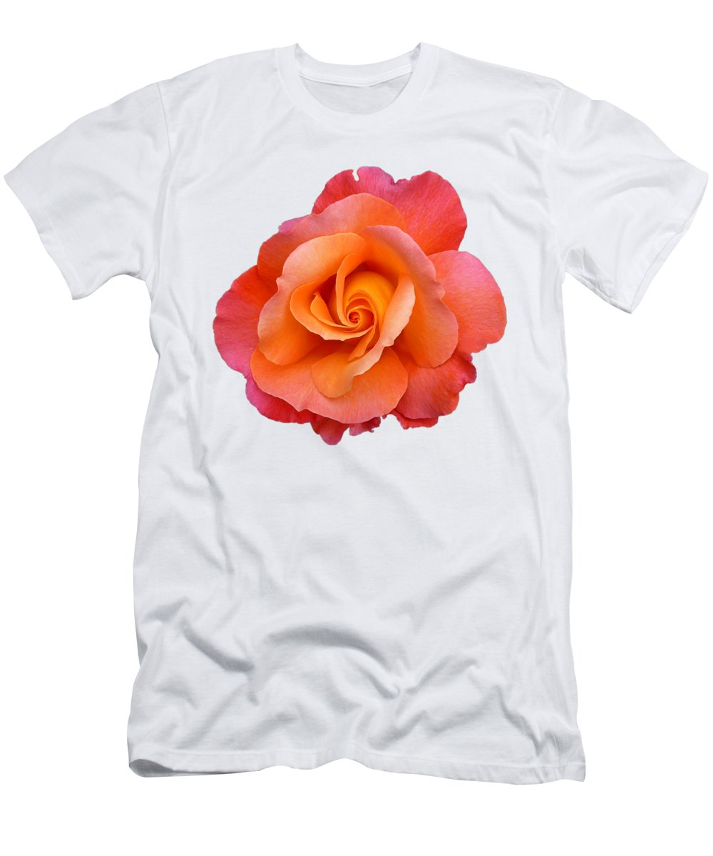 Rose Men's T-Shirt (Athletic Fit) featuring the photograph Orange Rosebud Highlight by Gill Billington