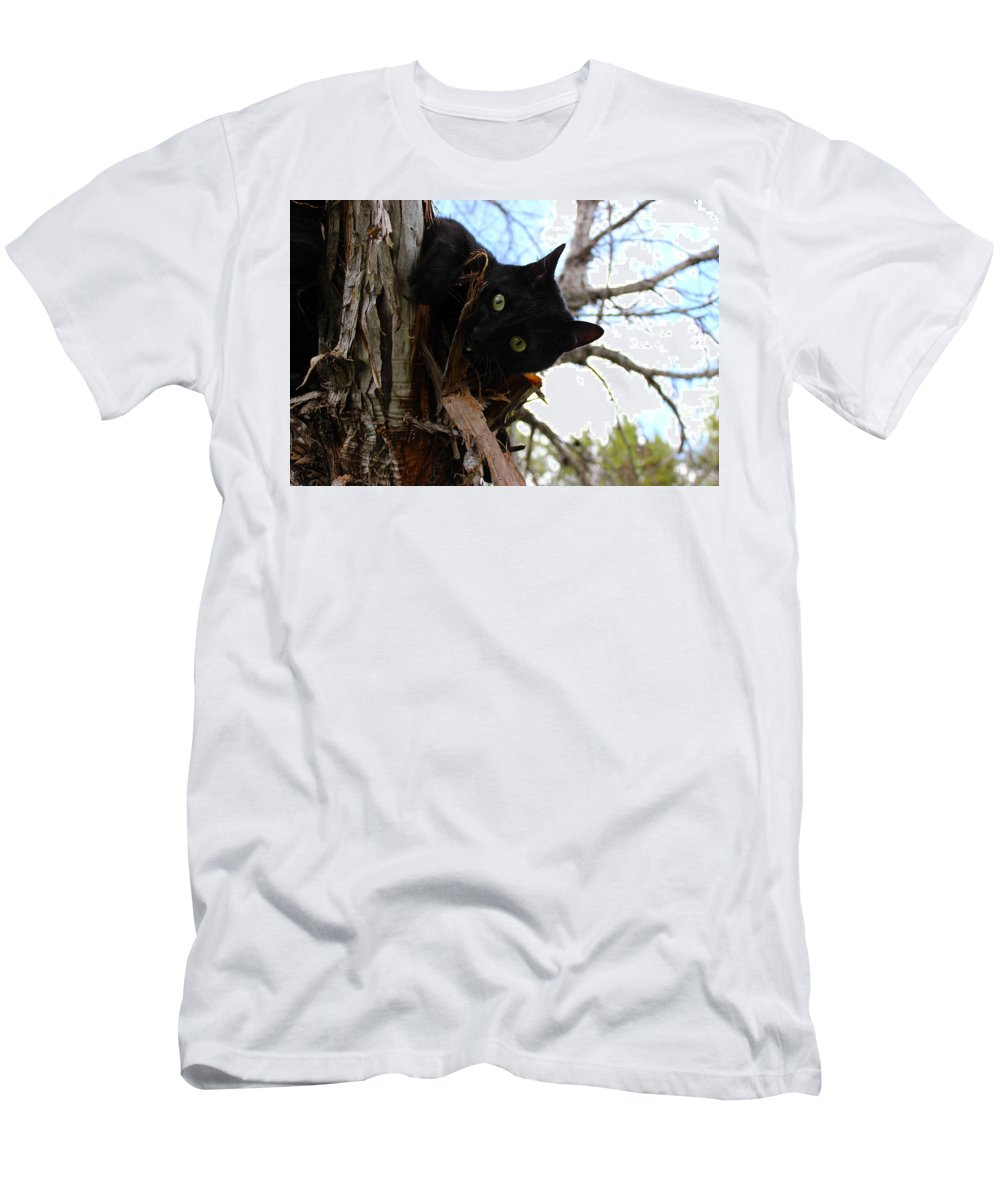 Cat Men's T-Shirt (Athletic Fit) featuring the photograph Peak-a-boo by Samantha Burrow
