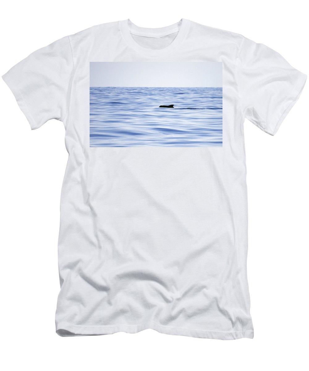 Spain Men's T-Shirt (Athletic Fit) featuring the photograph Pilot Whales 2 by Jouko Lehto