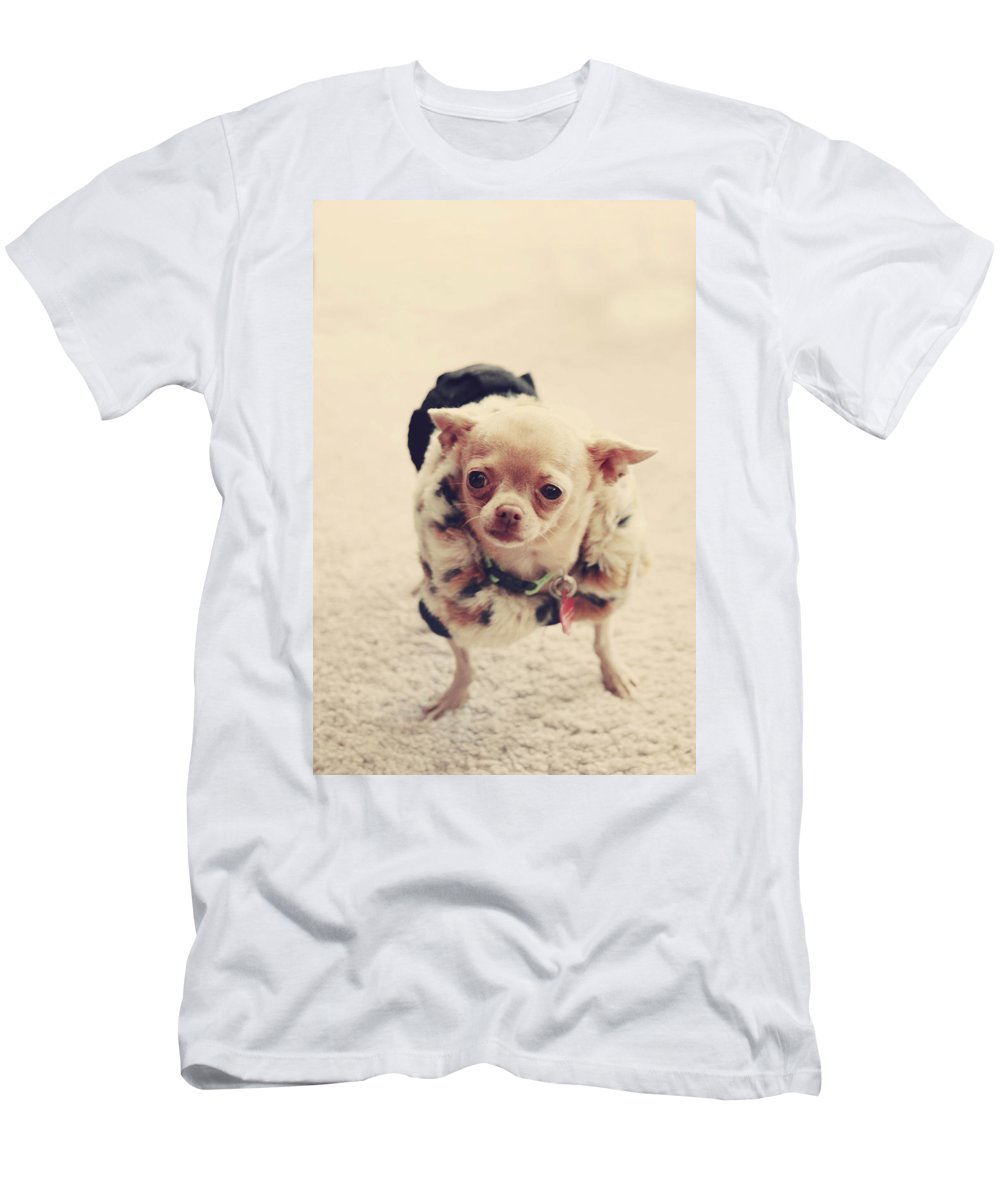 Dog Men's T-Shirt (Athletic Fit) featuring the photograph Please Meet Zoe by Laurie Search