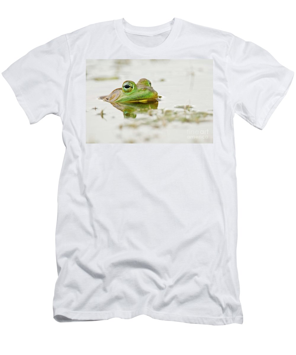 Frog Men's T-Shirt (Athletic Fit) featuring the photograph Pond Frog 4 by Michael Cummings