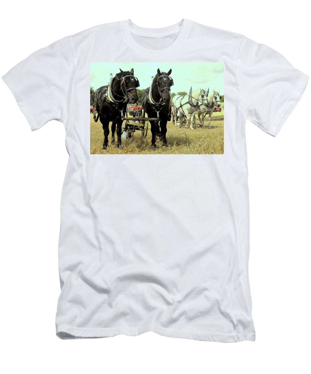 Horse Men's T-Shirt (Athletic Fit) featuring the photograph Posing by Ian MacDonald