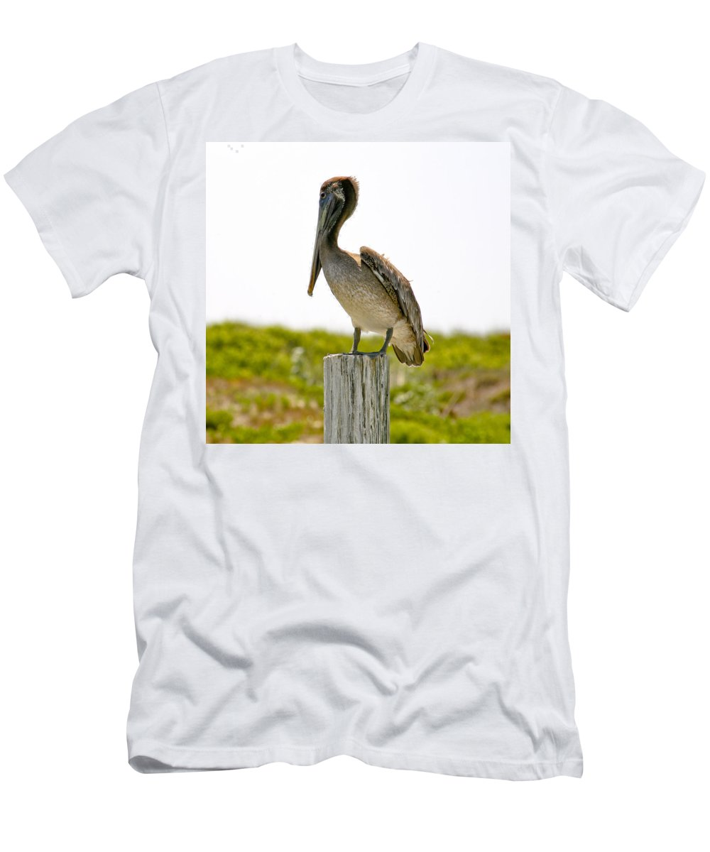 Pelican Men's T-Shirt (Athletic Fit) featuring the photograph Pretty Pelican by Marilyn Hunt