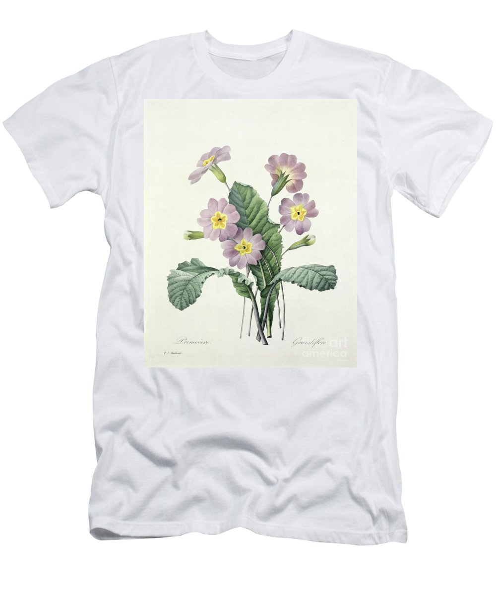 Primula Men's T-Shirt (Athletic Fit) featuring the drawing Primrose by Pierre Joseph Redoute