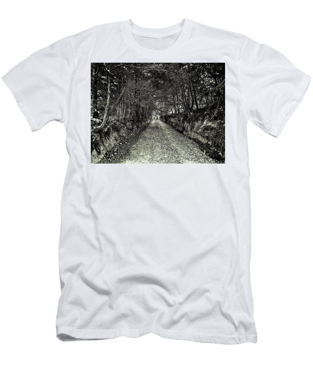 Tree Roots Men's T-Shirt (Athletic Fit) featuring the photograph Private Road B by John Myers
