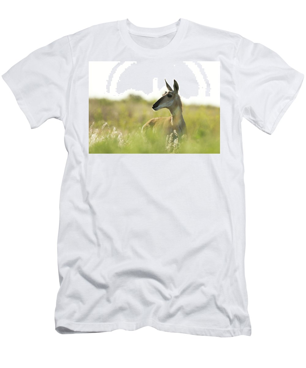 Pronghorn Men's T-Shirt (Athletic Fit) featuring the photograph Pronghorn by Sherry Adkins