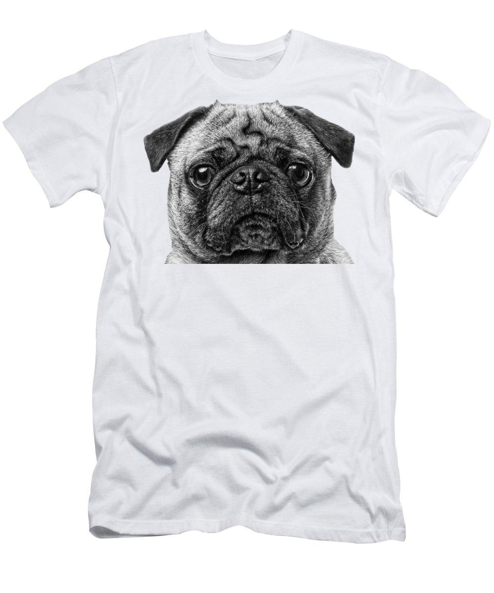 Puppies Photographs T-Shirts