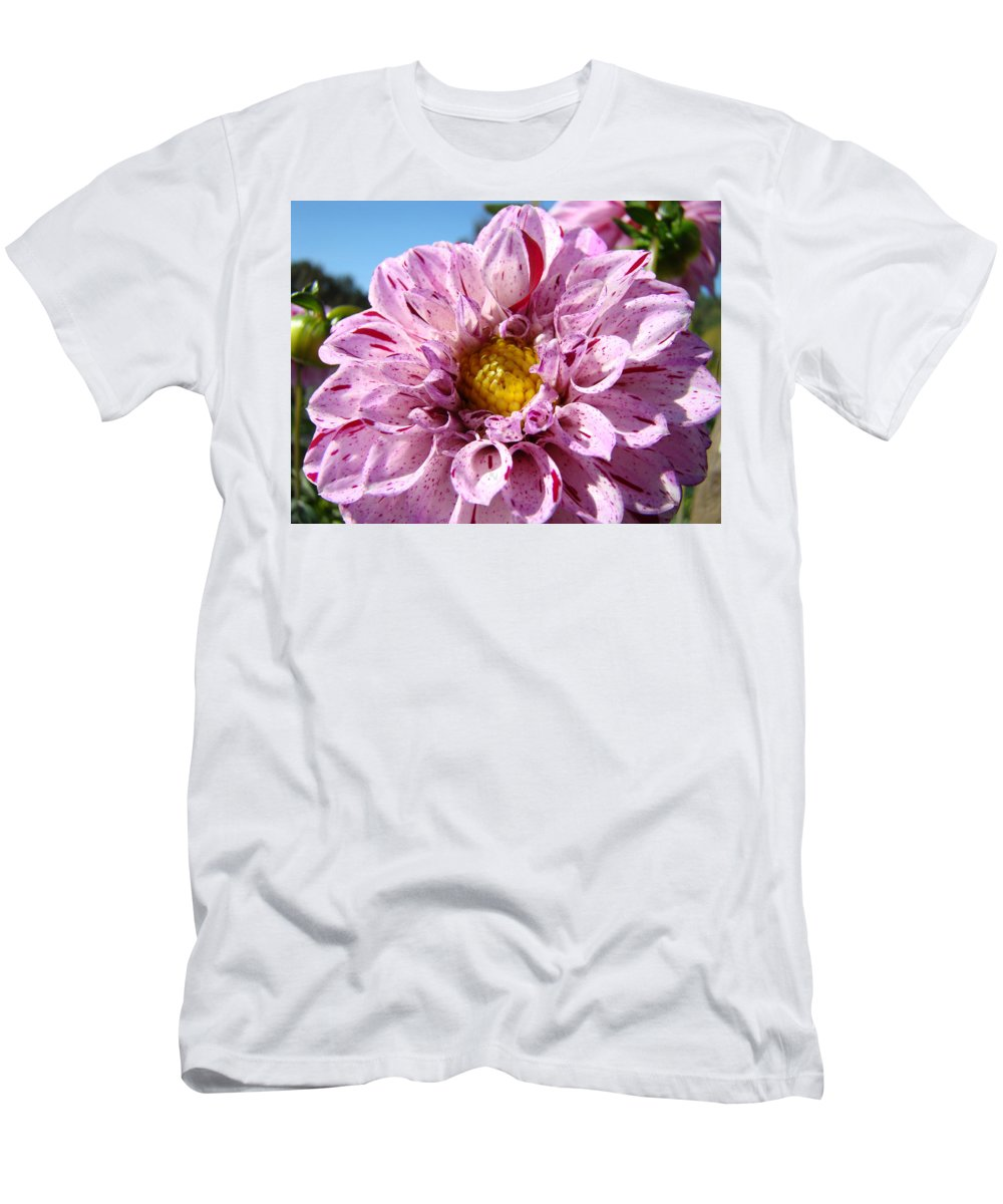 Dahlia Men's T-Shirt (Athletic Fit) featuring the photograph Purple Dahlia Flowers Pink Floral Art Prints Canvas Garden Baslee Troutman by Baslee Troutman