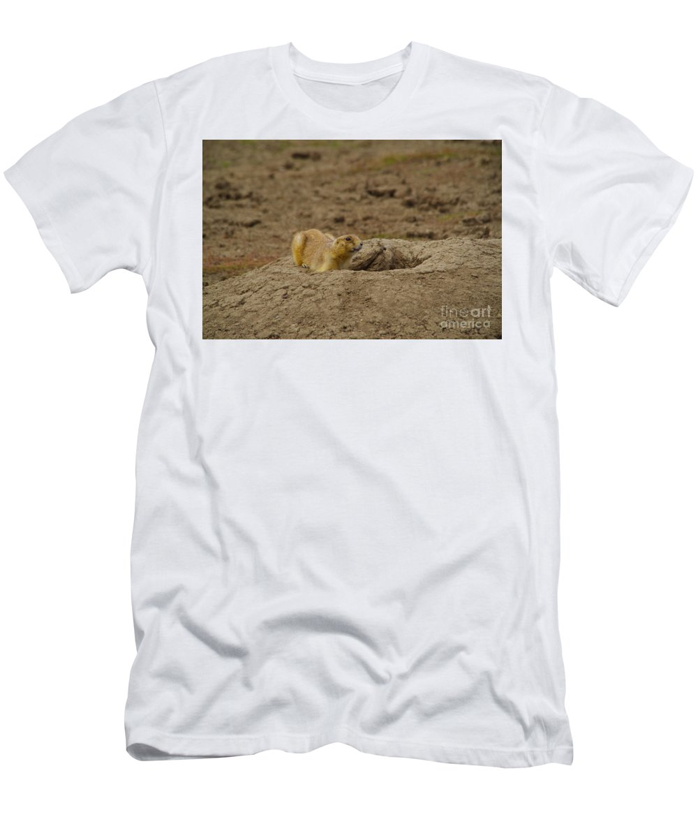 Prairie Dog Men's T-Shirt (Athletic Fit) featuring the photograph Ready To Dive by Jeff Swan