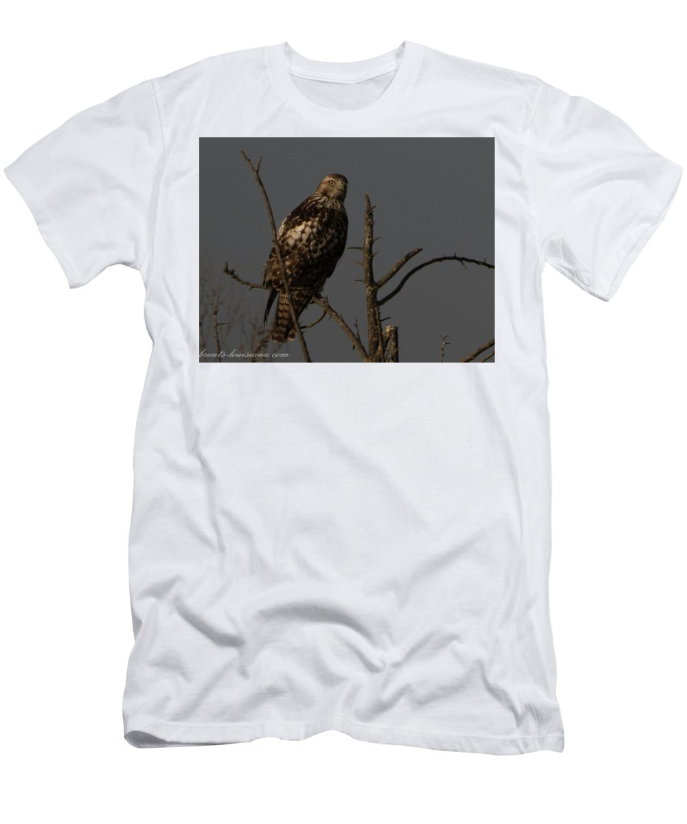 Red-tail Hawk Men's T-Shirt (Athletic Fit) featuring the photograph Red-tail Hawk 2 by Brent Bordelon