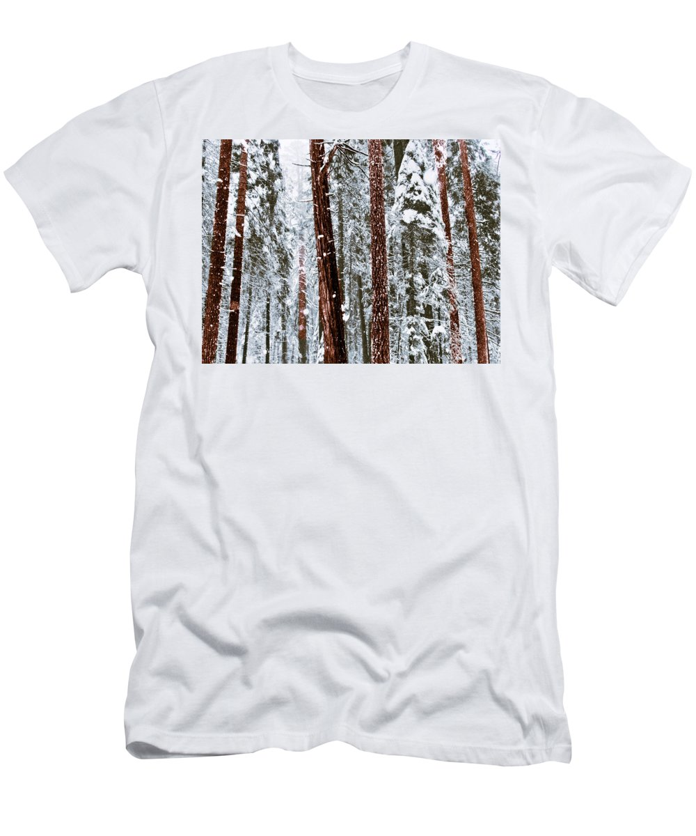 Landscape Men's T-Shirt (Athletic Fit) featuring the photograph Redwoods In Snow by Karen W Meyer