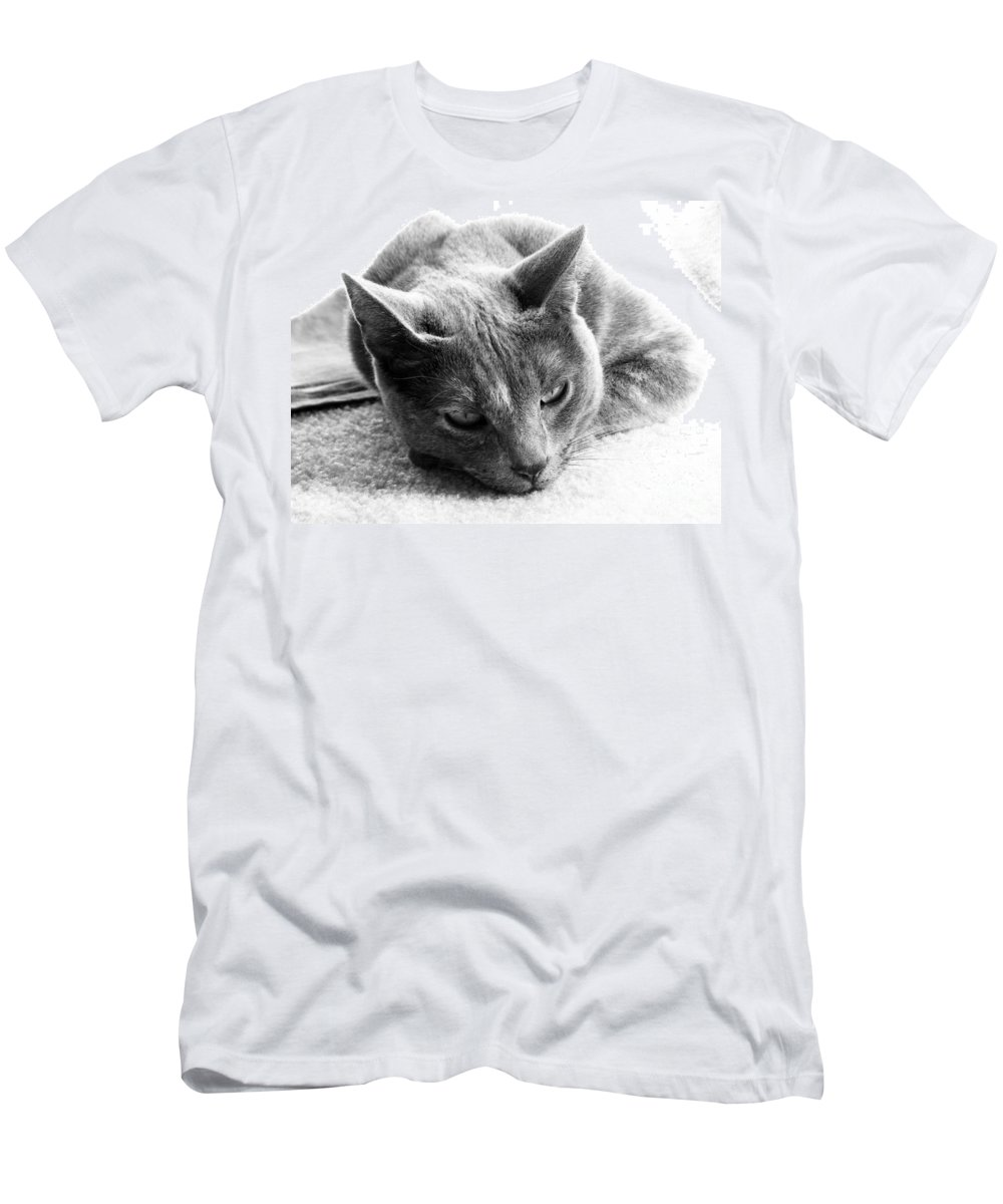 Cats Men's T-Shirt (Athletic Fit) featuring the photograph Resting by Amanda Barcon