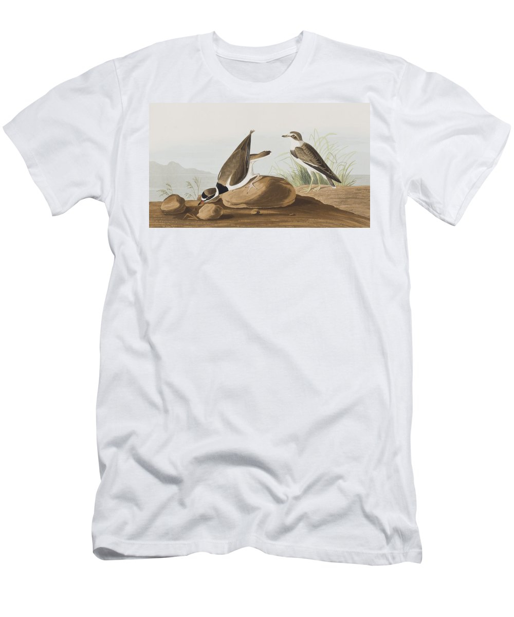 Plover Men's T-Shirt (Athletic Fit) featuring the painting Ring Plover by John James Audubon