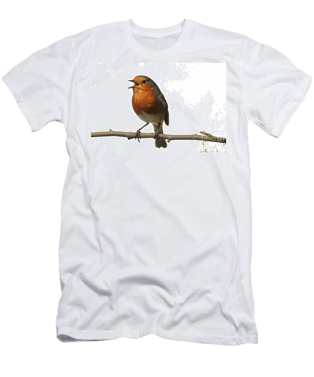 European Robin Men's T-Shirt (Athletic Fit) featuring the photograph Robin Singing On Branch by Warren Photographic
