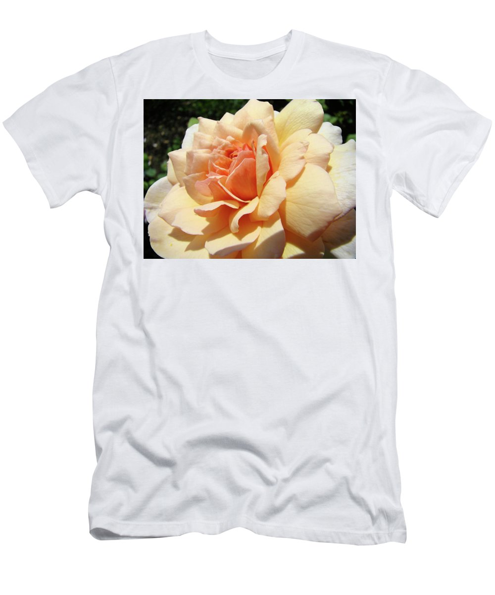 Rose Men's T-Shirt (Athletic Fit) featuring the photograph Rose Art Peach Orange Roses Sunlit Florals Giclee Baslee Troutman by Baslee Troutman