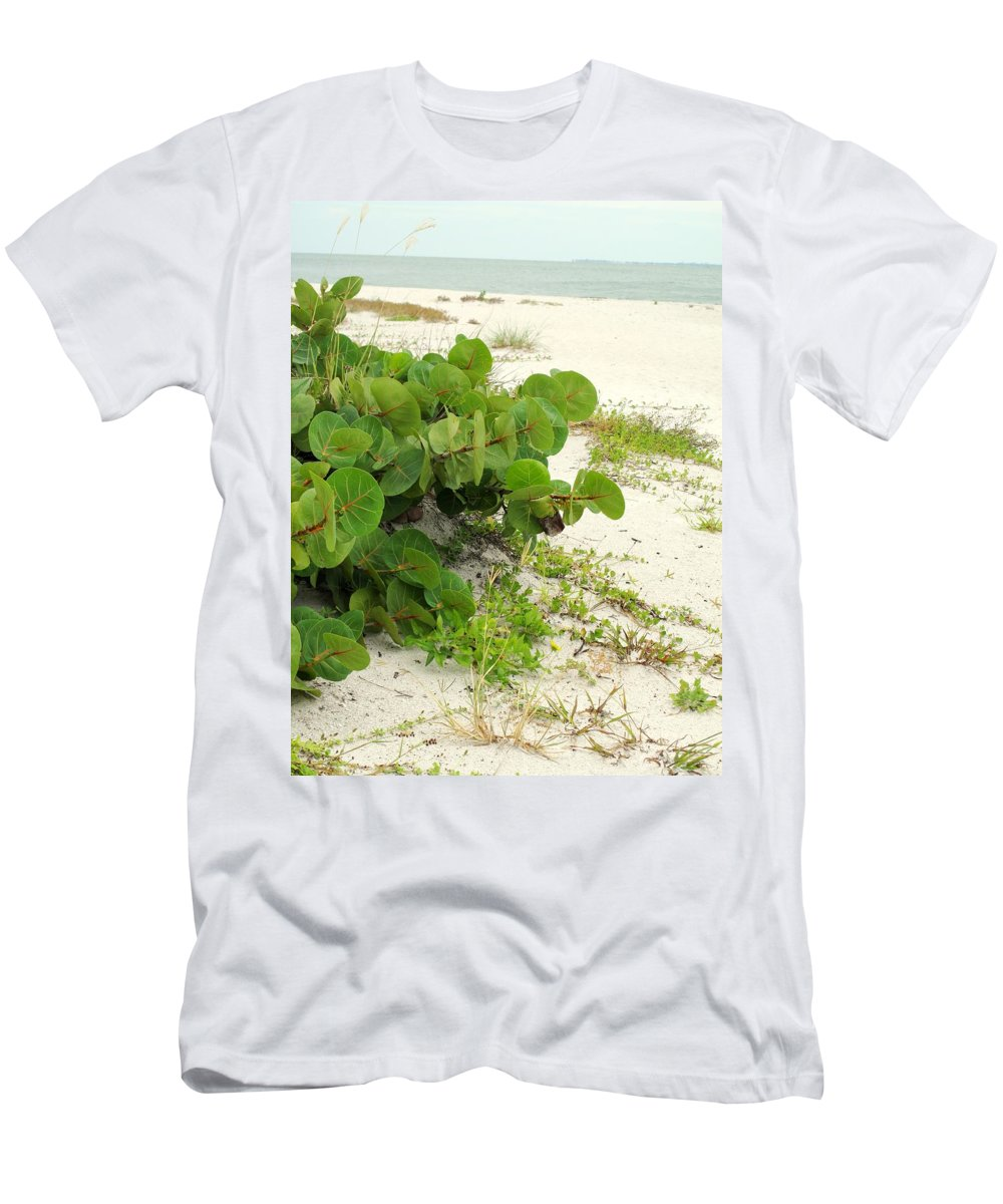 Florida Men's T-Shirt (Athletic Fit) featuring the photograph Sea Grapes by Ian MacDonald