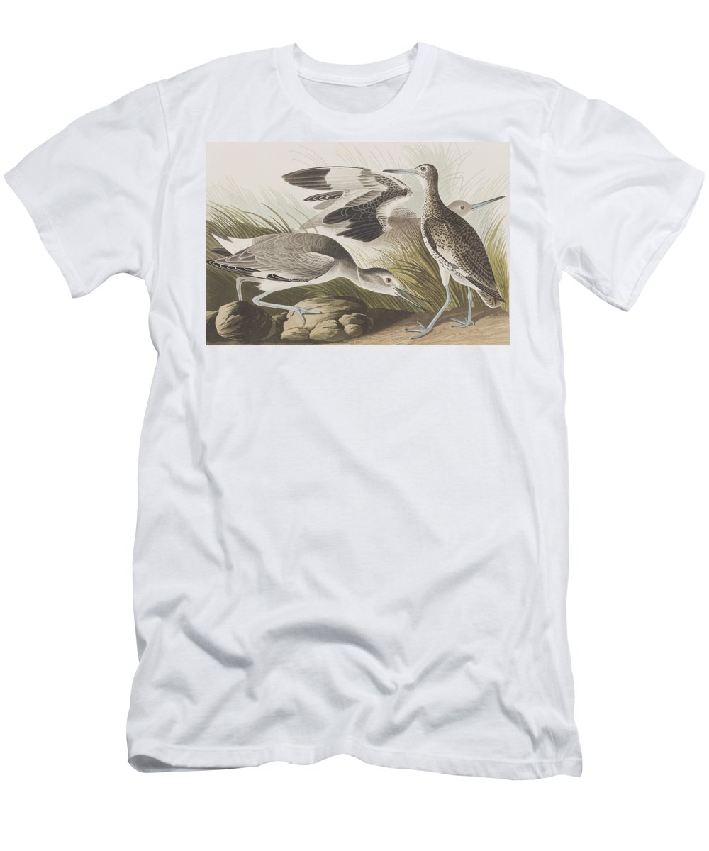Audubon Men's T-Shirt (Athletic Fit) featuring the painting Semipalmated Snipe Or Willet by John James Audubon