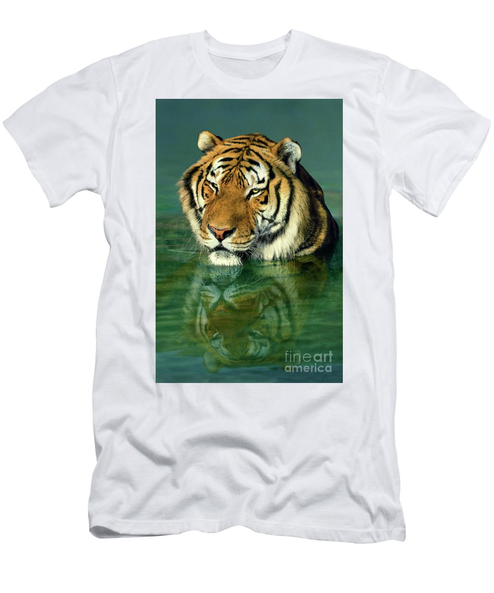 Siberian Tiger Men's T-Shirt (Athletic Fit) featuring the photograph Siberian Tiger Reflection Wildlife Rescue by Dave Welling