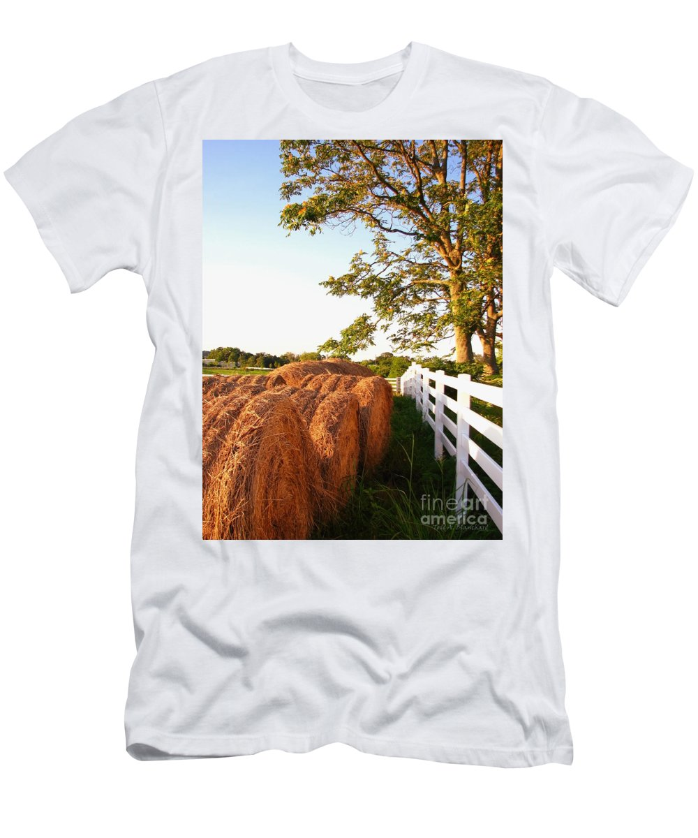 Landscape Men's T-Shirt (Athletic Fit) featuring the photograph Side-by-side by Todd Blanchard