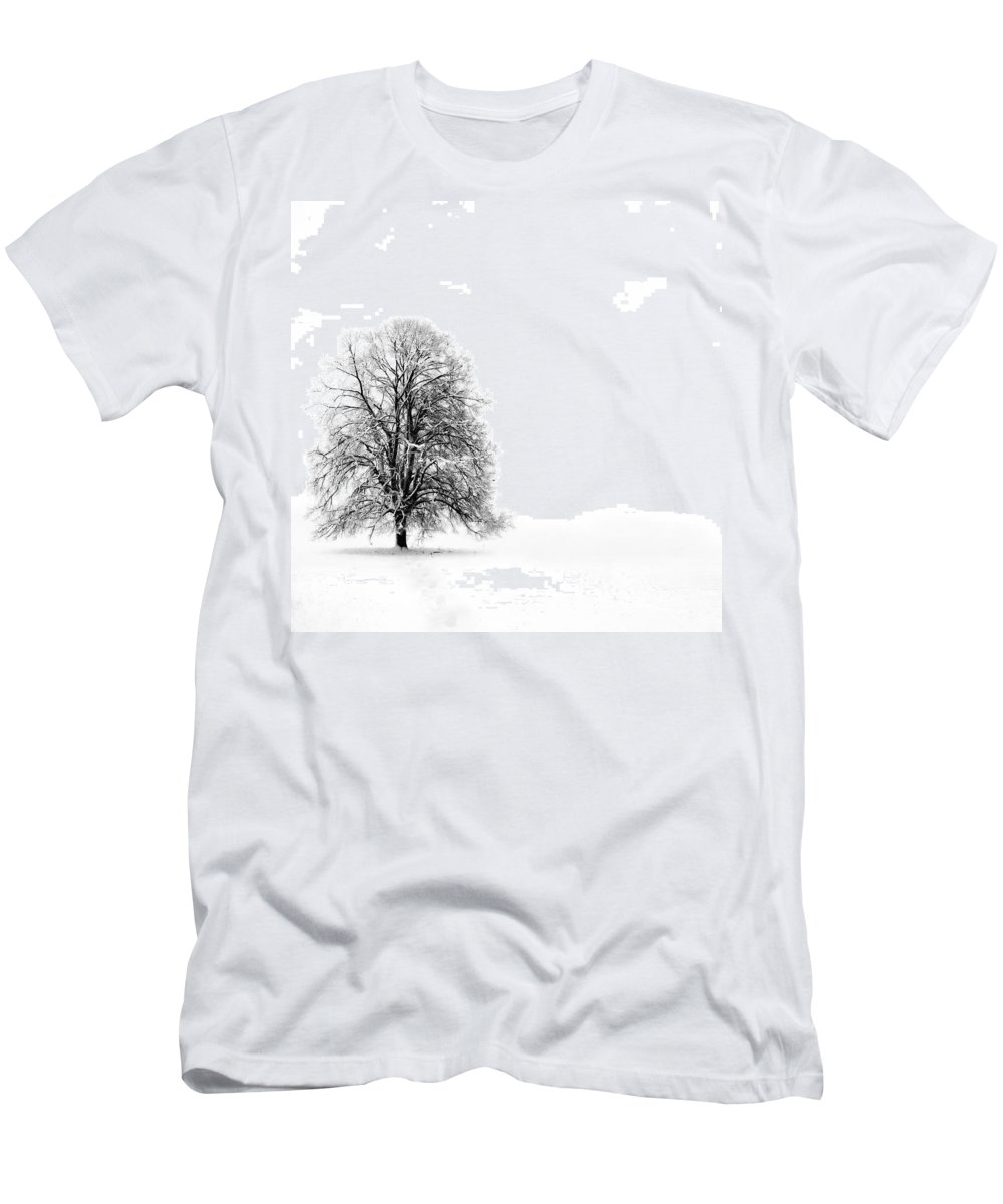 Landscape Men's T-Shirt (Athletic Fit) featuring the photograph Silenzio by Jacky Gerritsen