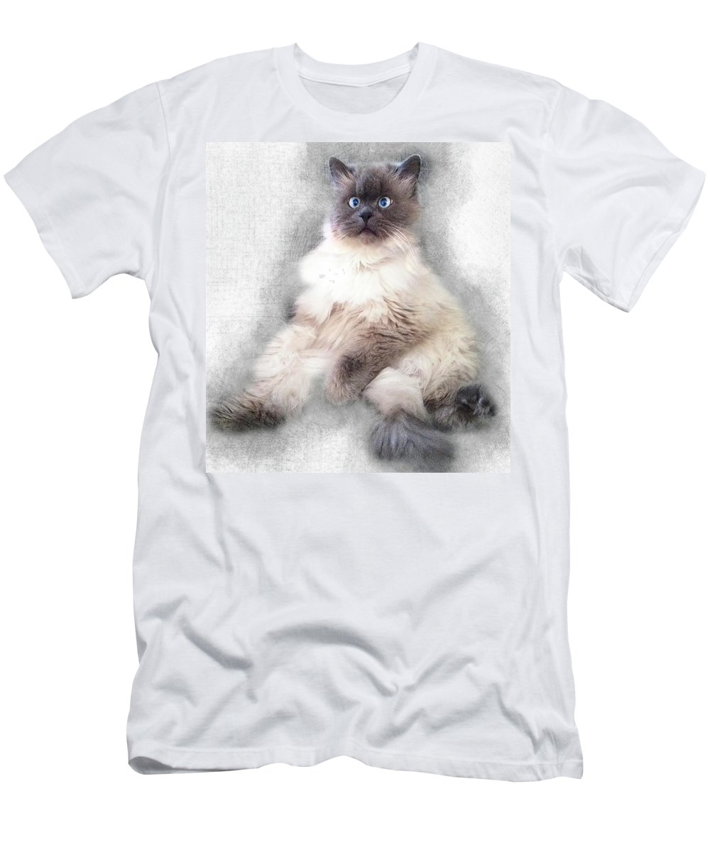 Cat Men's T-Shirt (Athletic Fit) featuring the painting Sketch Of Regal Himalayan Cat - Not by Elaine Plesser
