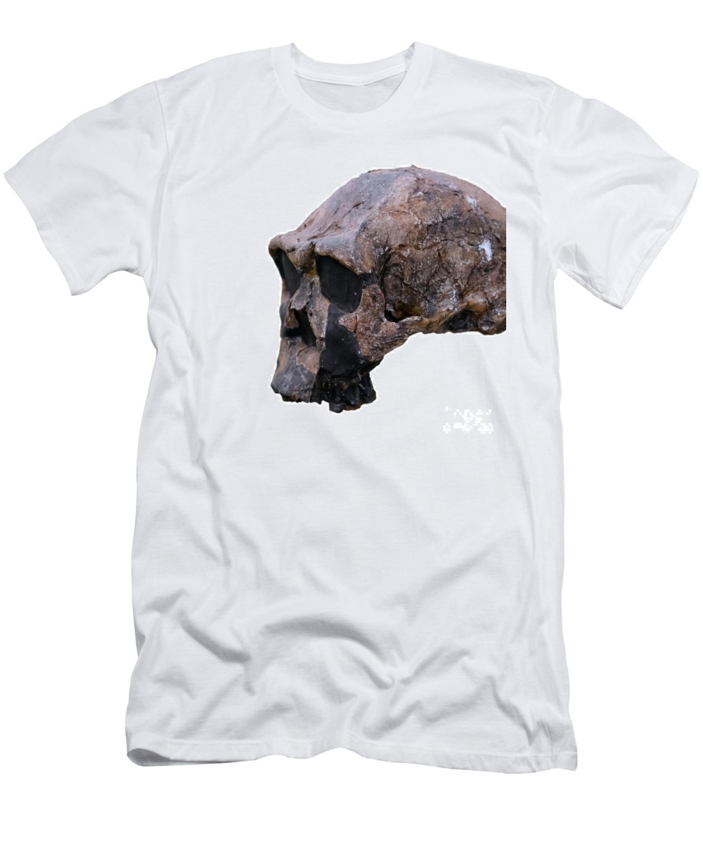 Science Men's T-Shirt (Athletic Fit) featuring the photograph Skull Of Homo Erectus by Babak Tafreshi
