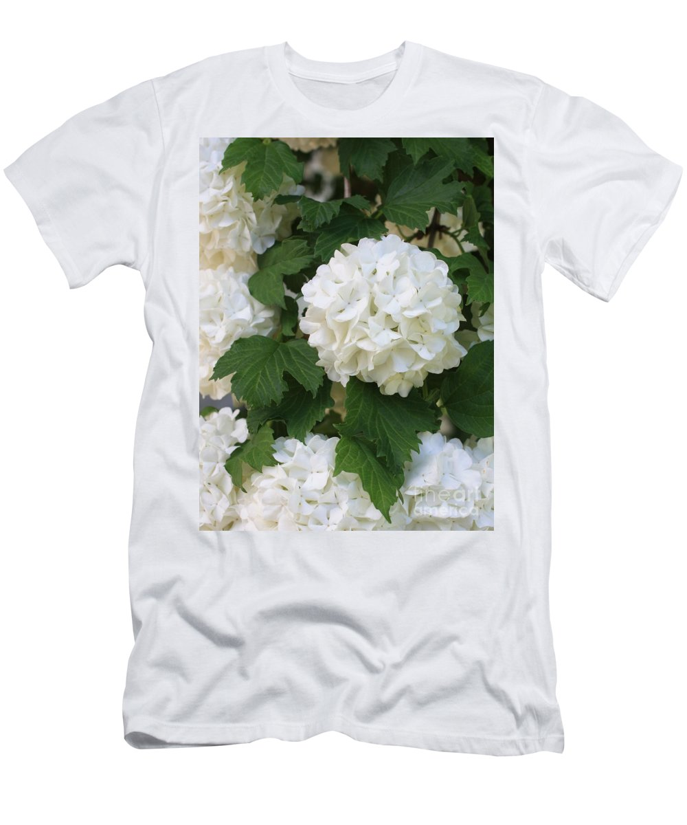Snowball Tree Men's T-Shirt (Athletic Fit) featuring the photograph Snowball Tree With Delicate Leaves by Carol Groenen