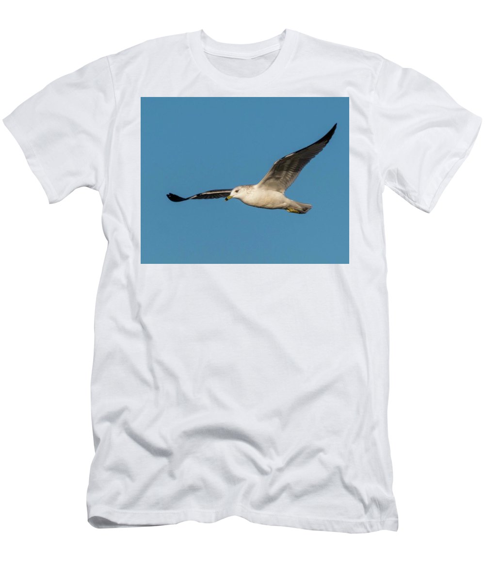 Wildlife Men's T-Shirt (Athletic Fit) featuring the photograph Soaring Gull by John Benedict