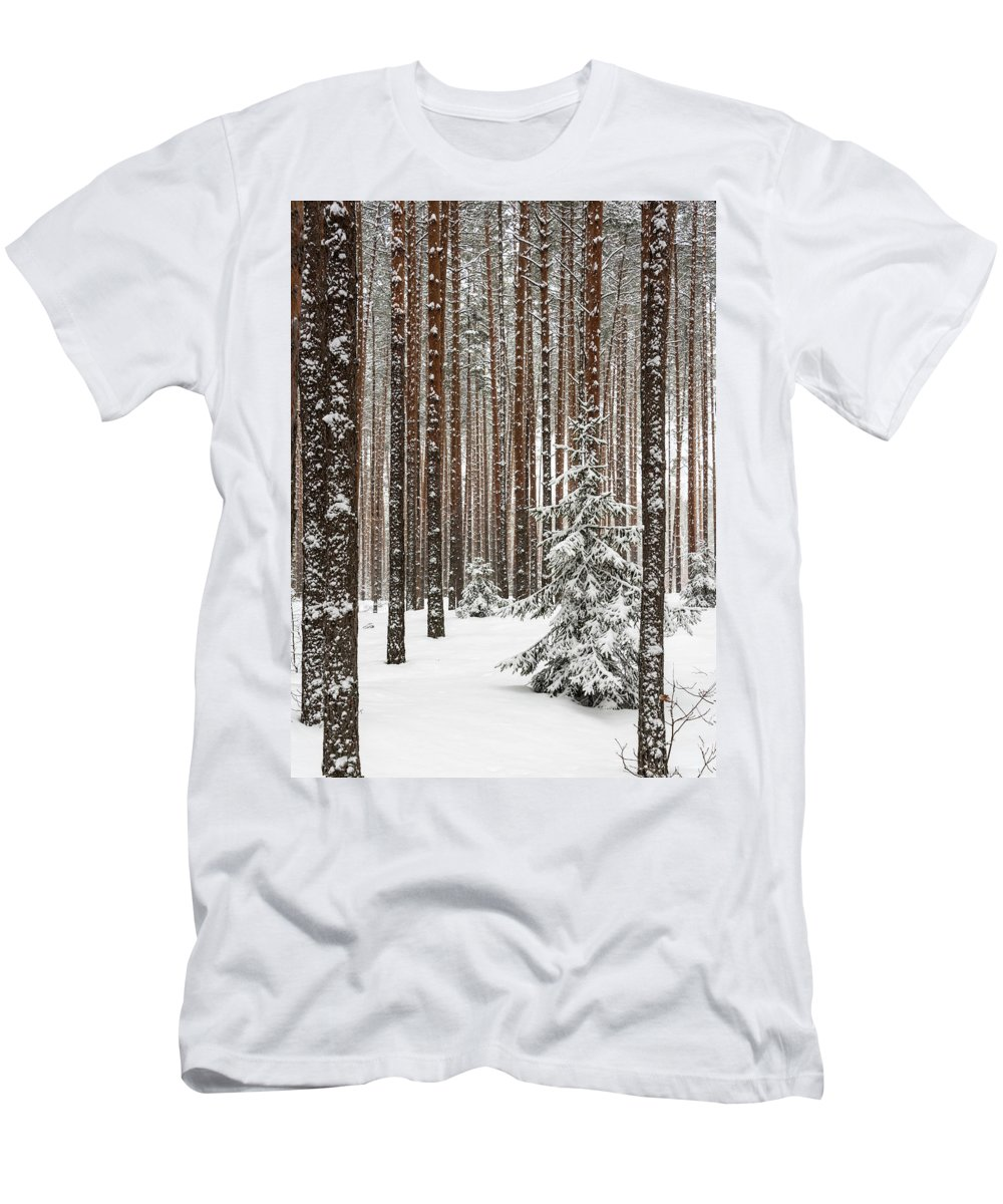 Spruce Men's T-Shirt (Athletic Fit) featuring the pyrography Spruce Among The Pines by Sergei Dolgov