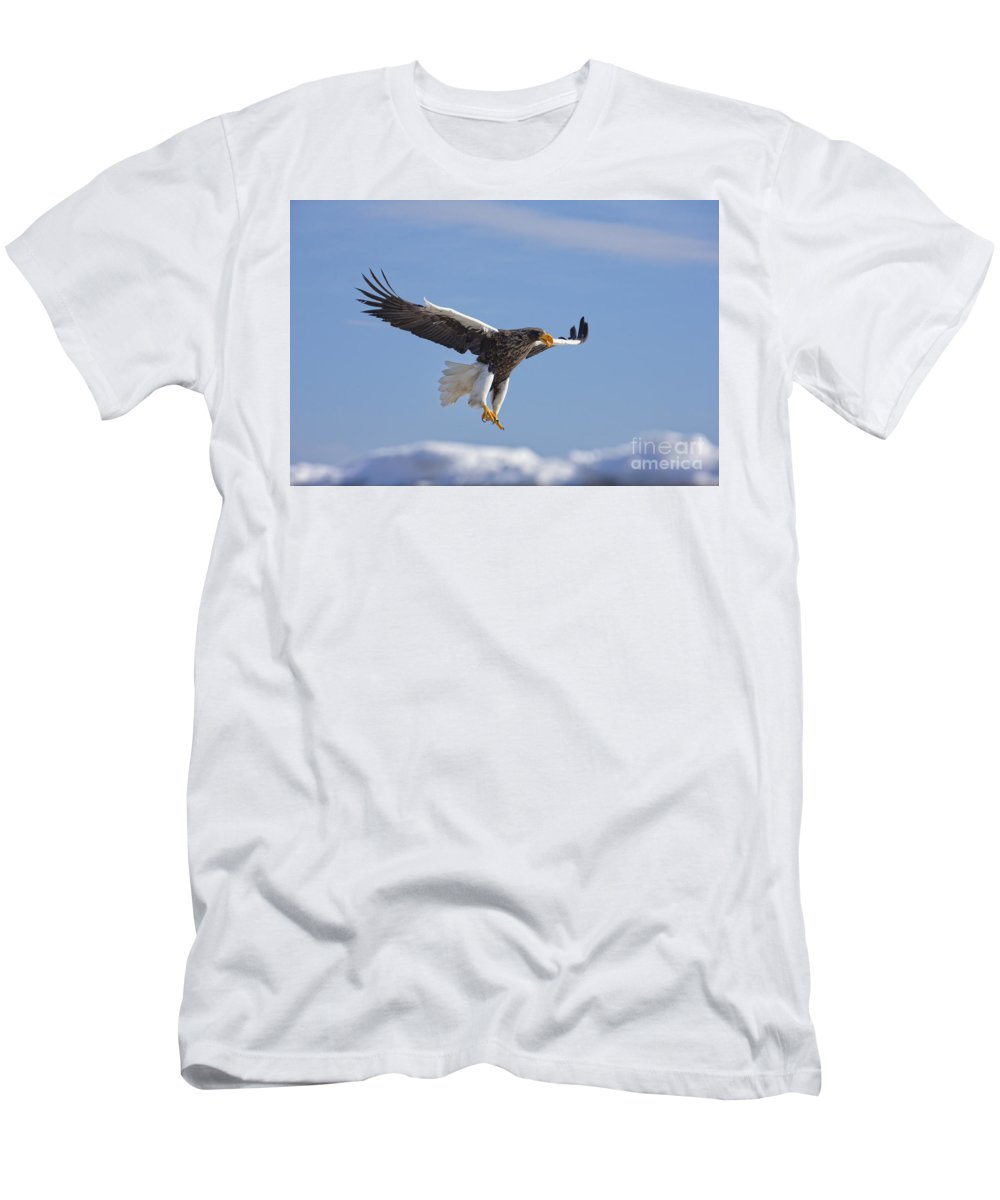 Eagles Men's T-Shirt (Athletic Fit) featuring the photograph Stellar Ballet by Leigh Lofgren