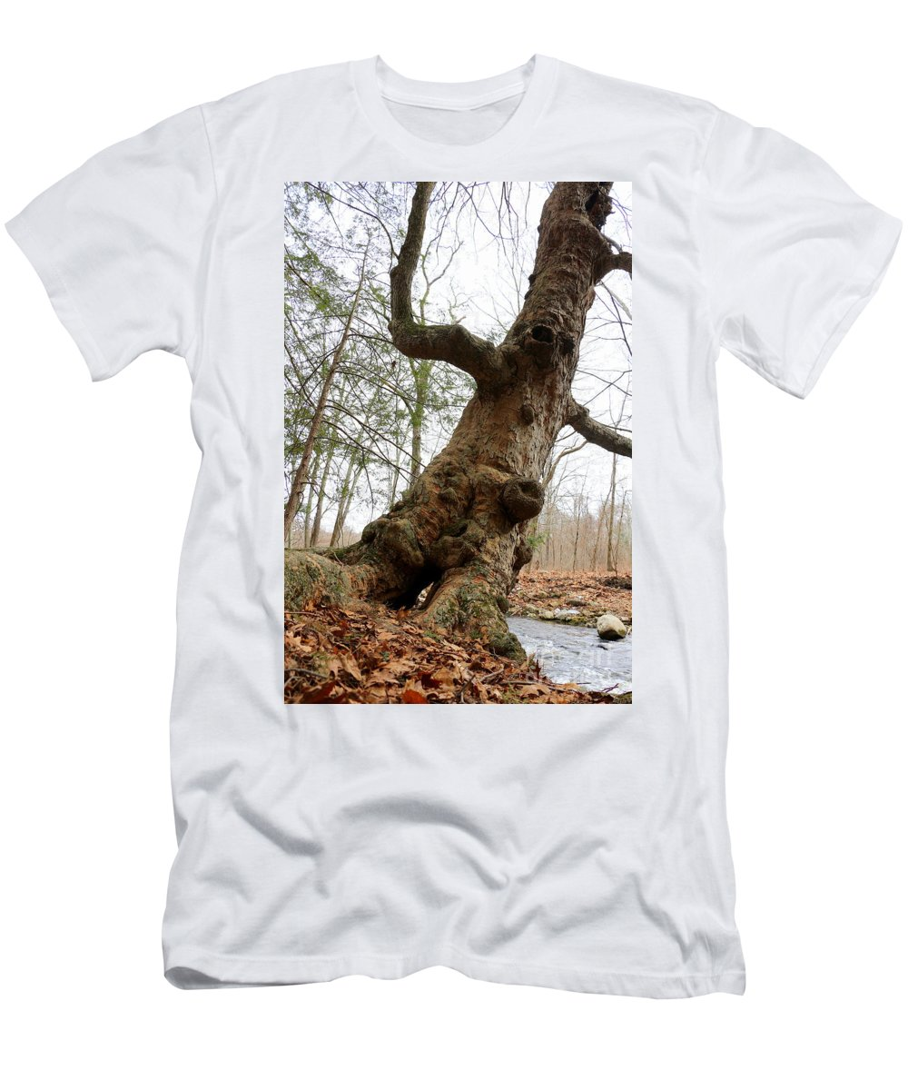 Tree Men's T-Shirt (Athletic Fit) featuring the photograph Stories To Tell by Neal Eslinger