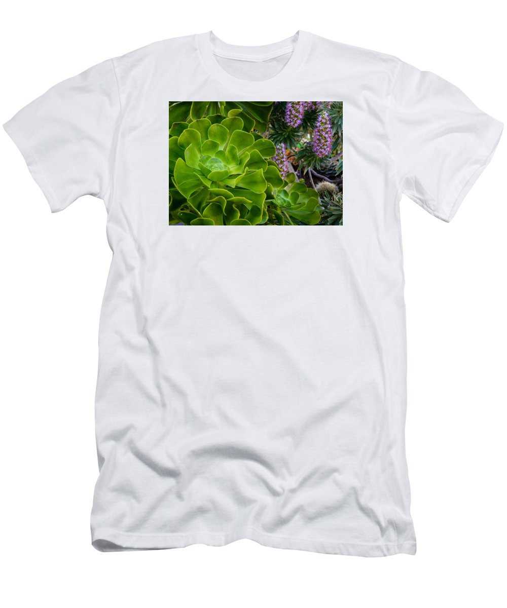 Succulents Men's T-Shirt (Athletic Fit) featuring the photograph Succulent Garden by Joan Baker