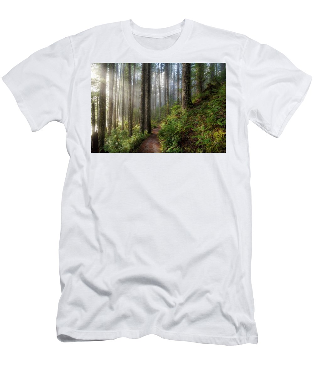 Washington Men's T-Shirt (Athletic Fit) featuring the photograph Sun Beams Along Hiking Trail In Washington State Park by David Gn