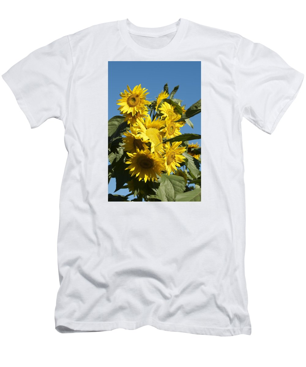 Flowers Men's T-Shirt (Athletic Fit) featuring the photograph Sunflowers by Christine Russell