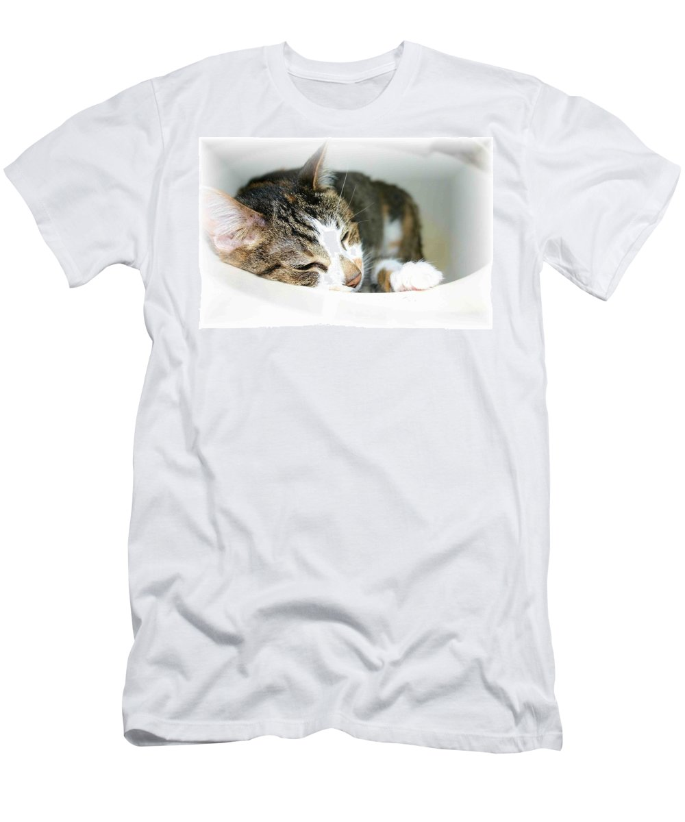 Cat Men's T-Shirt (Athletic Fit) featuring the photograph Sweet Dreams by Nelson Strong