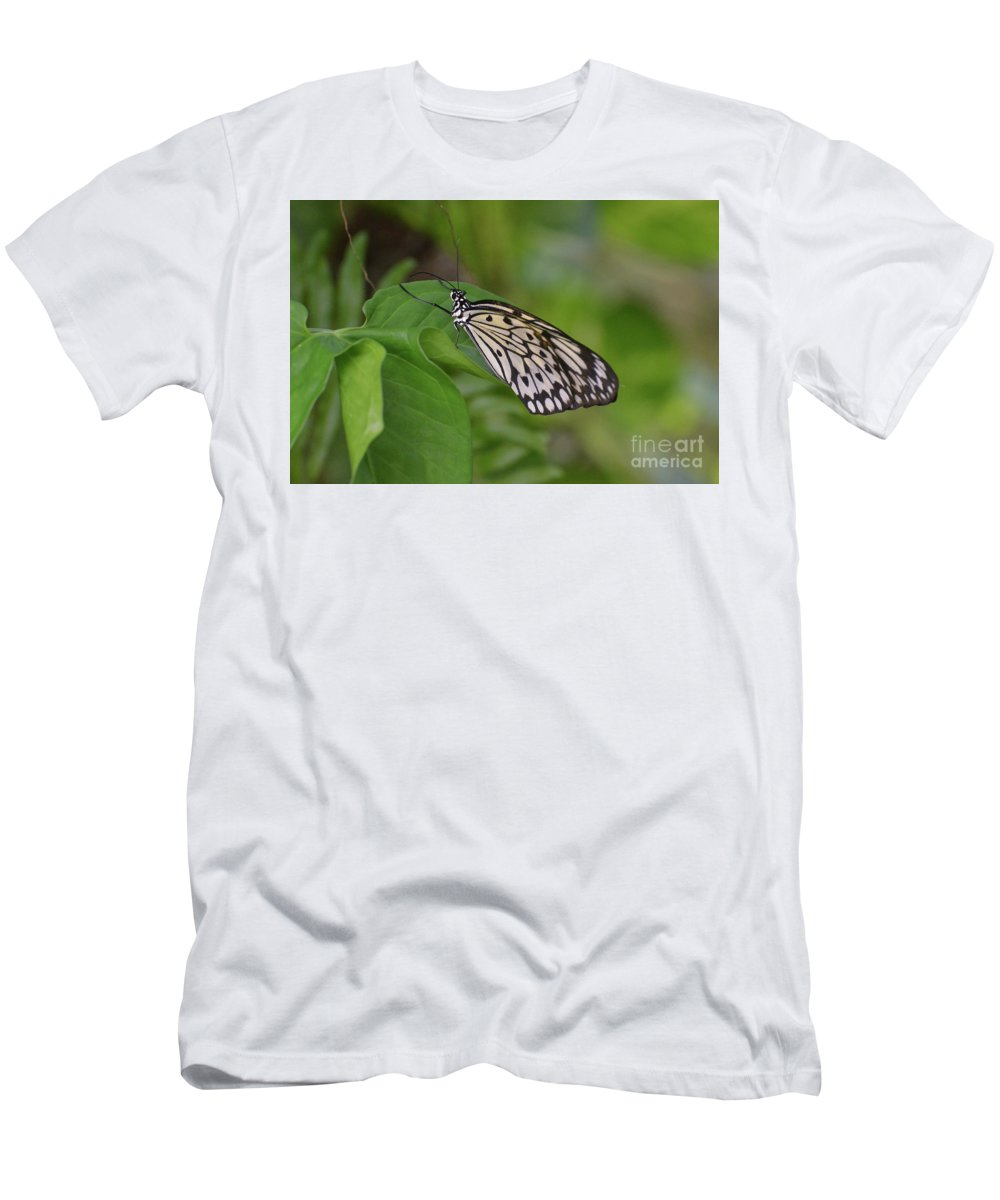 Tree-nymph Men's T-Shirt (Athletic Fit) featuring the photograph Terrific Capture Of A Paper Kite Butterfly On A Leaf by DejaVu Designs